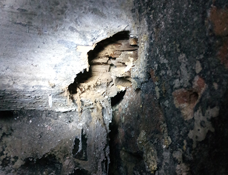 Wet & Dry Rot - Thornhill Damp Proofing